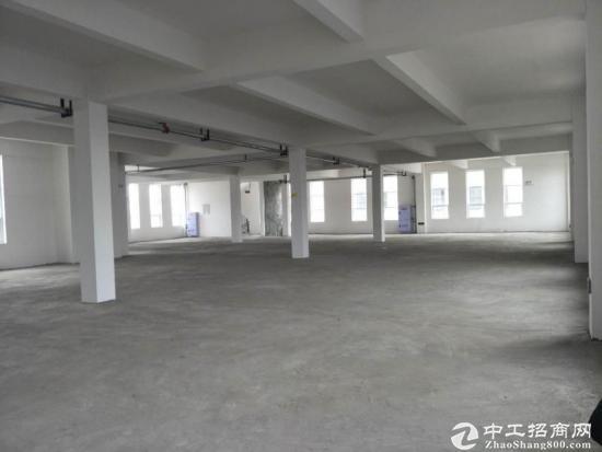 出售新津框架结构厂房