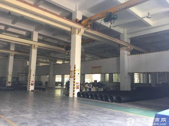 坪山标准一楼厂房高度11米,牛角位9.5米,2300平方