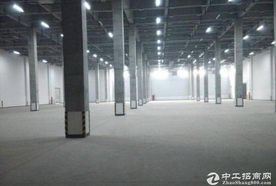 青白江物流园18000平标准高台库丙二类带喷淋