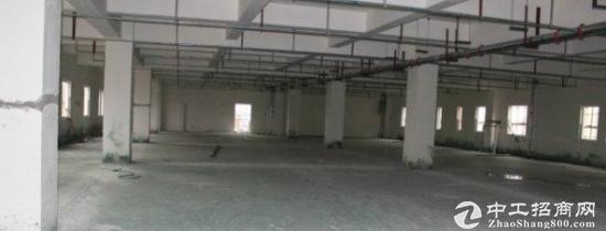 遂宁船山交通方便的标准轻工厂房