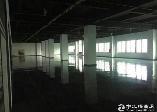 坂田杨美地铁站旁办公室带简装修128平起租