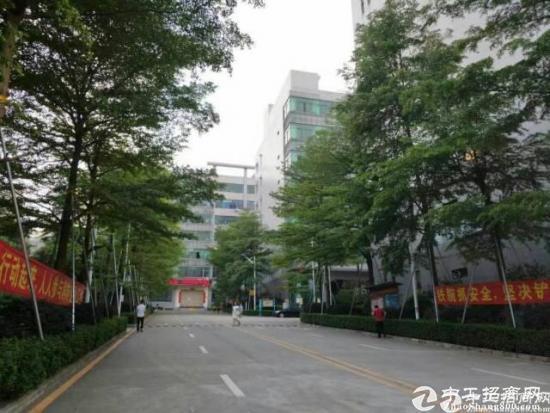 石岩高速口原房东红本厂房1+2楼4800平方厂房