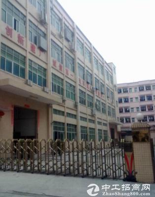 福永福园一路7300平米新出独院厂房原房东招租送装修