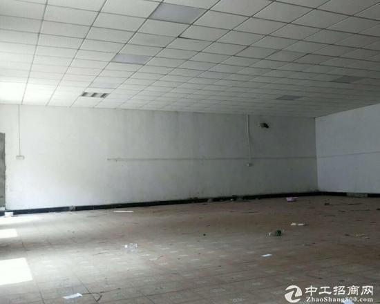 大邑晋原镇工业区,独院单一层1300平米可办环评招租