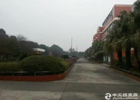 大邑韩场镇标准食品工业园区 4000平厂房出租