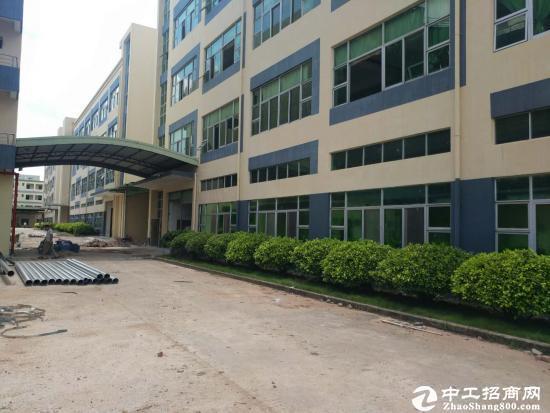 坪山新区石井比亚迪旁二楼厂房1200平米出租图片3
