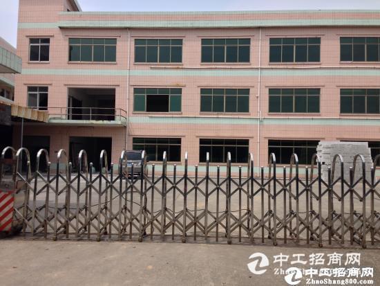 坪山江岭 红本精品小独院2800平带办公室厂房