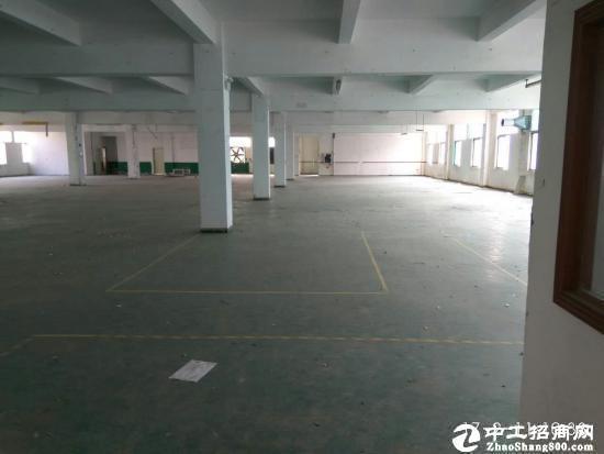 坪山江岭 红本精品小独院2800平带办公室厂房-图2