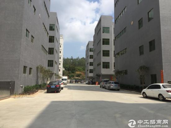 新圩原房东4-5楼各1200平方实际面积出租