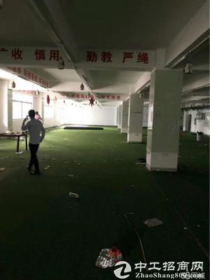 横岗楼上1100平服装厂房出租可分租-图2