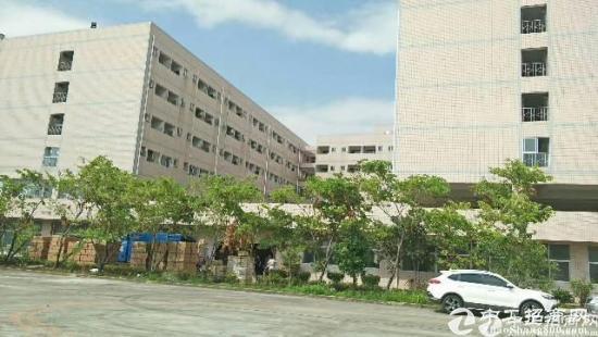 龙岗新出标准厂房17000平米厂房出租,原房东-图4