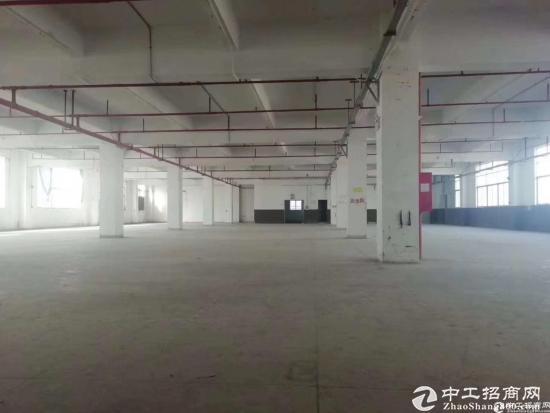坪地6800平标准独院,一高7米高-图2