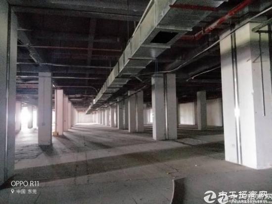 电商仓库超大3吨货梯3万平方大小分租能开税票,工业用地 可办环评