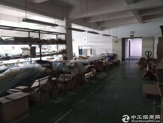 塘头工业区700平方带装修厂房出租-图3