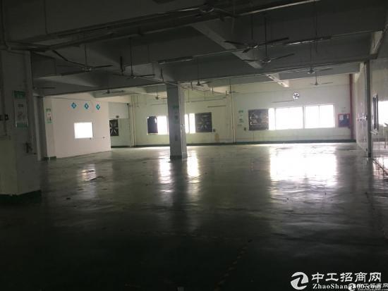 石岩北环原房东红本产业园2楼整层2750平米厂房出租-图2