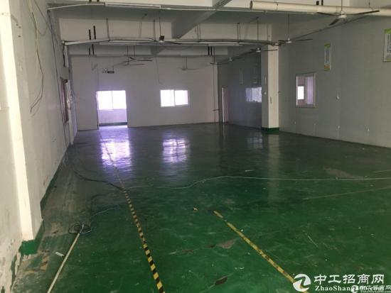 石岩北环原房东红本产业园2楼整层2750平米厂房出租-图4