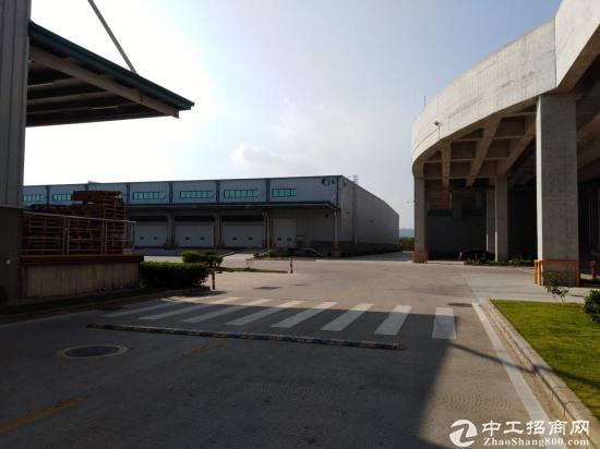 惠东白花大型钢构砖墙到顶十米滴水38000平可分租