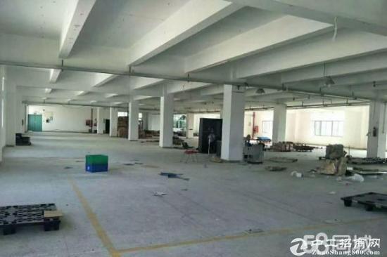食品加工厂房出租,平湖白泥坑新出三楼2600平带冷库对外急租-图2