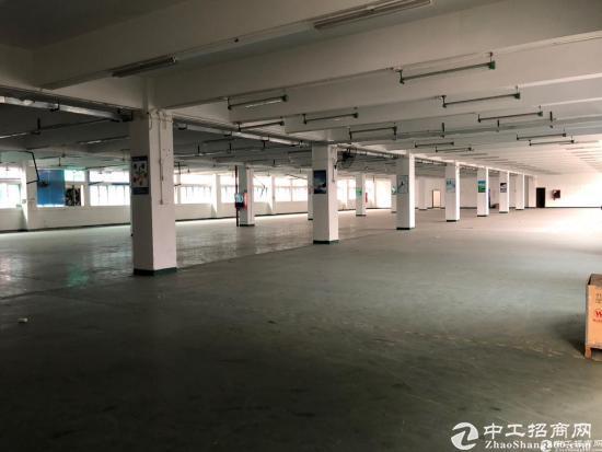 西丽阳光工业区2350平整层厂房9成使用率