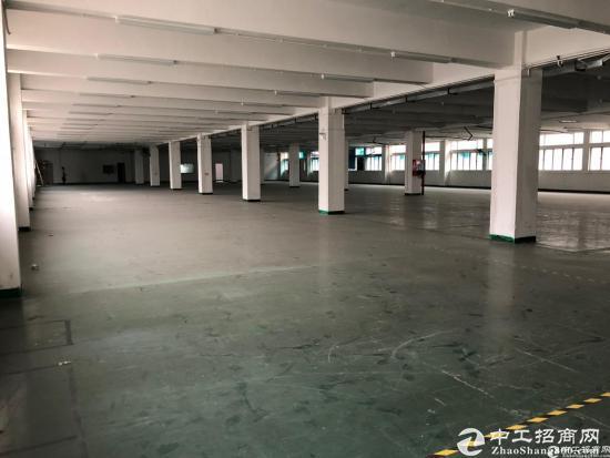 西丽阳光工业区2350平整层厂房9成使用率-图2