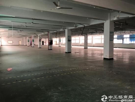 西丽阳光工业区2350平整层厂房9成使用率-图5