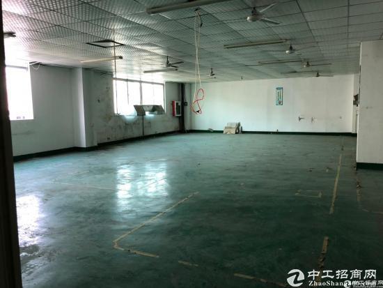 西丽阳光工业区原房东楼上800平带装修厂房出租-图4