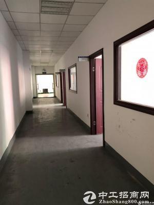 西丽阳光工业区原房东楼上800平带装修厂房出租-图5