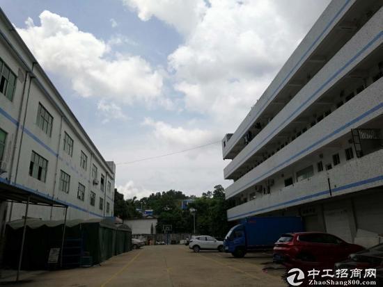 坑梓秀新工业区新出标准一楼厂房700平米招租
