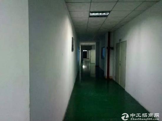 坑梓龙田莹展科技园带装修三楼2700平米