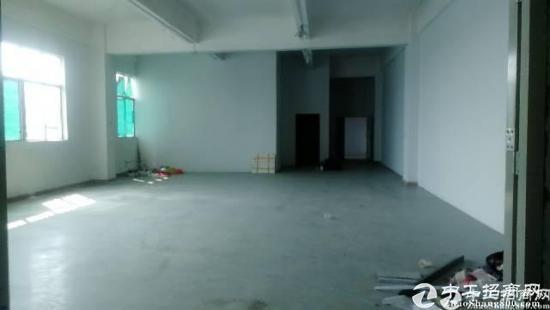 龙岗嶂背楼上精装修800平米出租无转让费厂房出租-图3