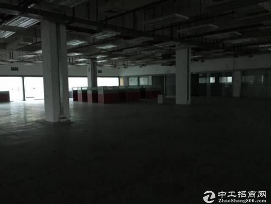 坑梓大窝大型工业园一楼1100平带装修招租