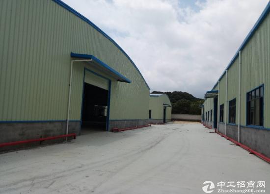 白花钢构厂房出租13200平 空地超大可搭建厂房