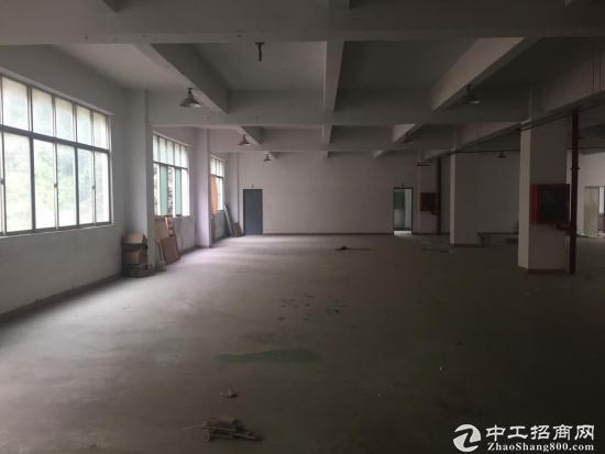 横岗 惠盐路三楼1130平带电梯厂房20块出租-图4