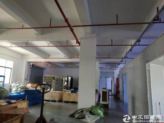 龙岗坪山坑梓秀新新出带装修厂房二楼750平米