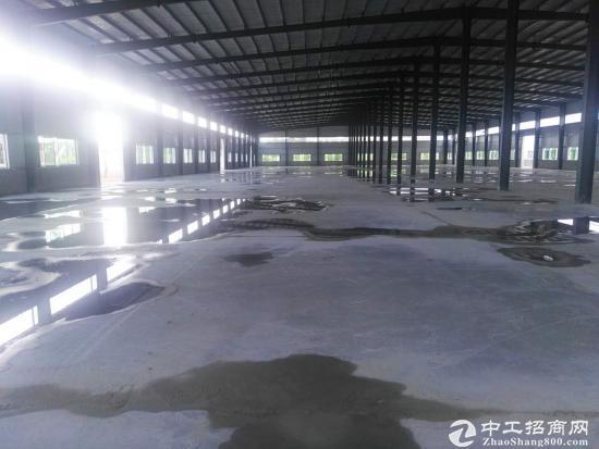 龙岗坪山坑梓秀新高速出口附近钢结构厂房1500平米
