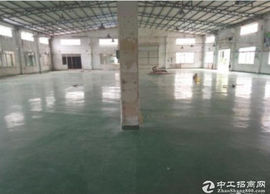 惠城区马安独门独院4400平方钢构厂房