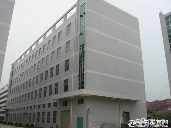 坪山 碧岭 新出工业园2楼带装修1250平 出租