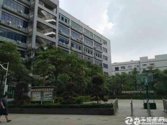 石岩水田原房东红本产业园1+2楼4800平方厂房招租