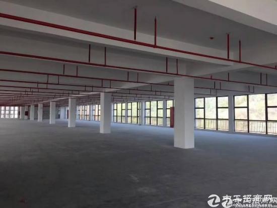 横岗六约新出独院厂房10000平临近塘坑地铁站