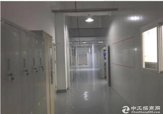 大工业区红本厂房1200平米带地坪漆招租