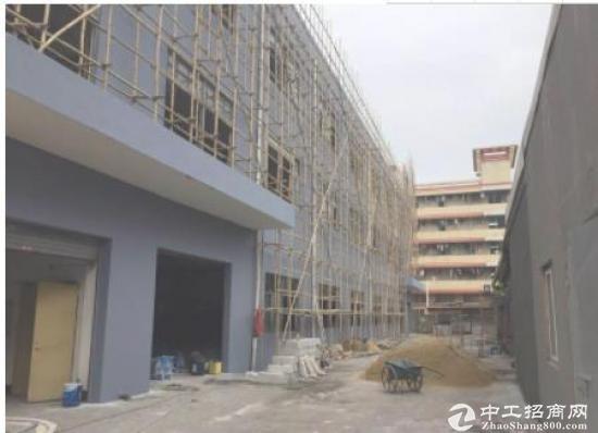 坑梓龙田工业区新空出一、二楼3500平方可分层招租