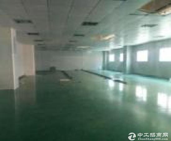 华南城平湖电商物流园3000平方仓库出租