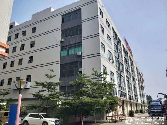 平湖原房东电商产业园三楼2600平米带豪华装修出