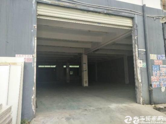 横岗四联(原房东)一楼500平招租