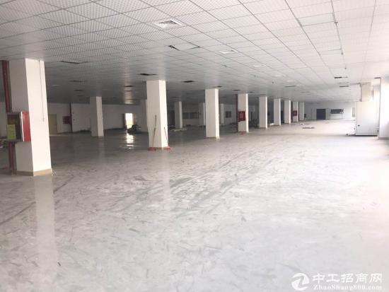 横岗 横坪公路边红本厂房楼上分租1400平米 精装修办公室