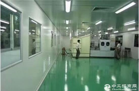 平湖清平高速出口印刷厂5000平米出租可分租急急