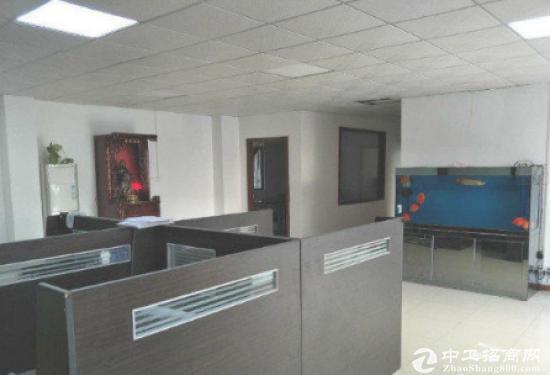 大洋田一楼750平米标准厂房招租