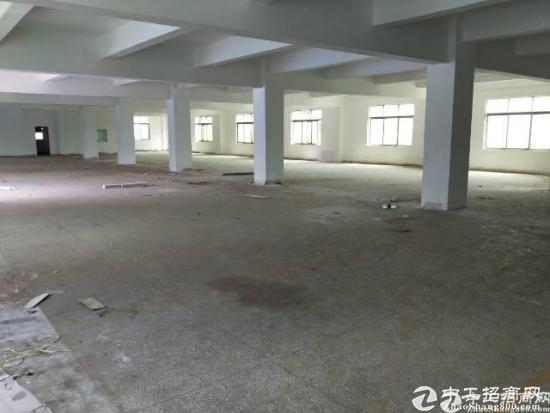 横岗大康大万村龙发工业区1500平厂出租