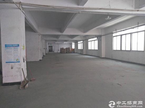 龙岗坪地红本独院厂房8000平米