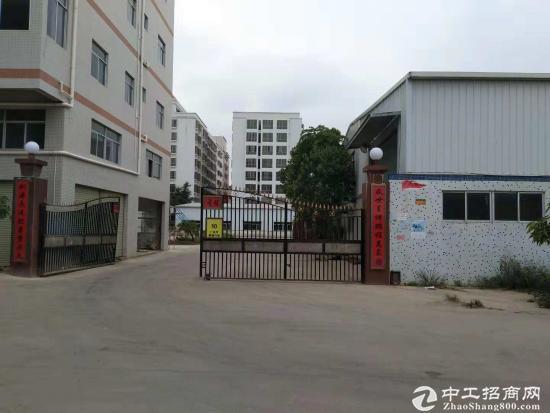惠东白花独院钢构5500平隆重招租原房东面积可实量